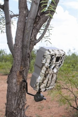 HME Economy Trail Camera Holder - GSM Outdoors